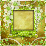 Green scrapbook photo album. (to place the photo or text inside the frame royalty free illustration