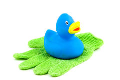 Green scrub glove with blue rubber duck Royalty Free Stock Image