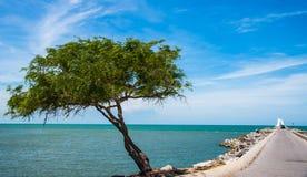 Green sea sand sun Stock Photo