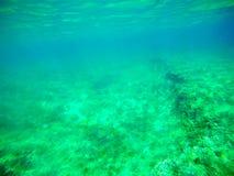 Green sea in Sardinia Stock Photos