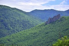 Blue-green mountains of the Sikhote-Alin. stock images