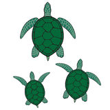 Green sea turtle illustration Stock Images