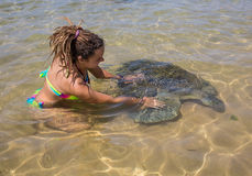 Green Sea Turtle and man Royalty Free Stock Images
