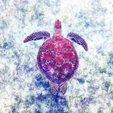 Green sea turtle swimming over seagrass. Royalty Free Stock Photos