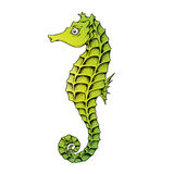 Green Seahorse Line Art Illustration Stock Images