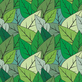 Green seamless abstract leaves  texture Royalty Free Stock Images