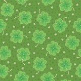 Green seamless background with shamrock. Leaves and white flowers, ornate pattern for st.Patrick day Stock Images