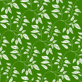 Green seamless background with vibrant leaves. Abstract Elegance natural seamless pattern with leaf Royalty Free Stock Image