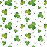 Green seamless clover pattern Royalty Free Stock Image