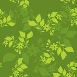 Green seamless floral texture - vector Royalty Free Stock Photos