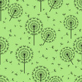Green seamless pattern with black dandelions fluff Royalty Free Stock Image