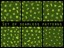 Green seamless pattern with leaves. Set. Stock Image