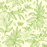 Green seamless pattern with plants and birds Royalty Free Stock Image