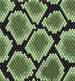 Green seamless snake skin pattern Royalty Free Stock Images