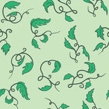Green seamless vine Royalty Free Stock Images