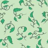 Green seamless vine. For wine, pattern stock illustration