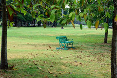 Green seat. A green seat stands alone on a grass field in a city park of Bangkok , Thailand Stock Photo