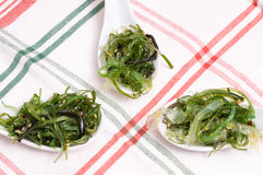 Green seaweed as appetizer Stock Photos