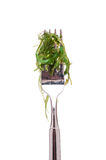 Green seaweed on a fork Stock Photos