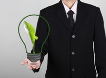 green seedling in light bulb on hand businessman Stock Photos