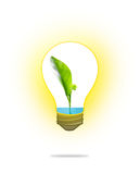 Green seedling with water in light bulb on white Stock Photography