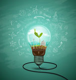 Green seedlings in a light bulb ecology Stock Images