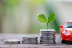 Green Seedlings Tree Grow On Coin Money Of Graph Business And Re Stock Image