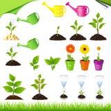 Green Set Royalty Free Stock Image