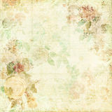 Green Shabby Chic Background With Flowers Stock Photo