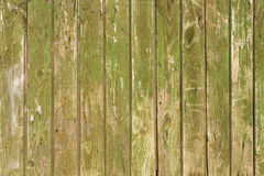 Green shabby wooden panel background closeup. Retro timbered backdrop closeup Royalty Free Stock Images