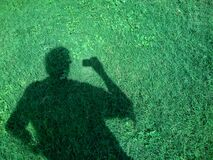 The Green Shadow Royalty Free Stock Photography