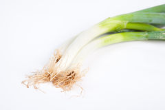 Green Shallot Stock Photo