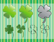 Green shamrock Stock Photos