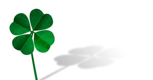 Green Shamrock, Ideal for St Patrick's day. Shamrock with shadow on white Stock Illustration