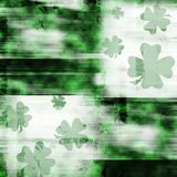 Green shamrocks. On grungy background Stock Photos