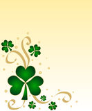 Green shamrocks. With golden ribbon Stock Image