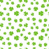 Green shamrocks or clovers vector seamless pattern. Green shamrocks or clovers on white background vector seamless pattern Royalty Free Stock Image