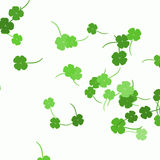 Green shamrocks. Irish green shamrock St. Patrick Day scattered Stock Images