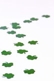 Green Shamrocks on a White Background. Green Shamrocks and four leaf clovers on a White Background royalty free stock photography