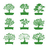 Green shape of Bonsai Trees. Vector Illustration. Royalty Free Stock Image