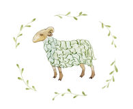 The green sheep. Royalty Free Stock Photos
