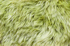 Green sheepskin Stock Photo