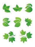 Green sheet Royalty Free Stock Photos