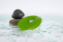 Green sheet with a dewdrop against stones. Green sheet with a dewdrop on glass splashed with water against stones removed close up Stock Photos