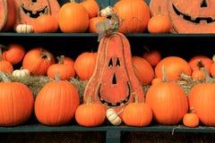 Green shelves with pumpkins and grinning Jack-O-Lanterns Stock Photos
