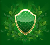 Green shield Royalty Free Stock Photography