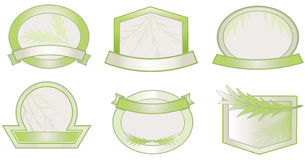 Green shield design elements. Vector set of leaf green labels Stock Photography