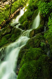 Green Shine. Slow motion waterfall running over moss in the Wasatch national forest in Utah USA Royalty Free Stock Photos