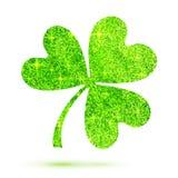 Green shining glitter glamour clover leaf on white Stock Images