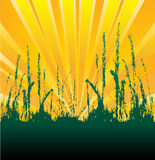 Green Shoots. Illustration of green shoots growing in the sun to show optimism royalty free illustration